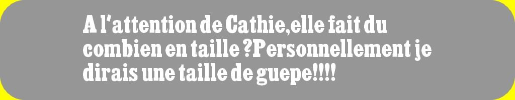 AMMOPHILE DES SABLES (JE PENSE) DÉCOUVERTE HIER