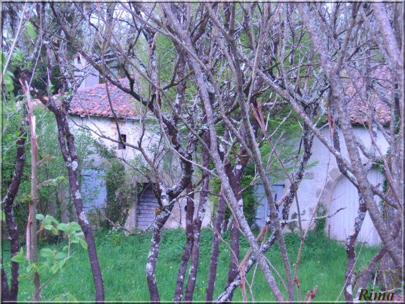 http://storage.canalblog.com/28/92/210797/25115882.jpg