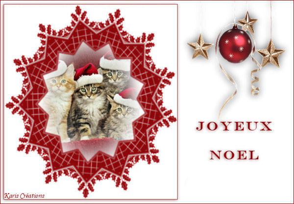 """Joyeux Noel """"Animaux"""" 2"""