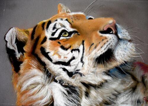 Pastel : J'ai mis du temps avant de mettre un tigre...
