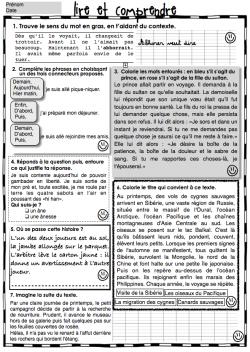 Fichier de lecture compréhension