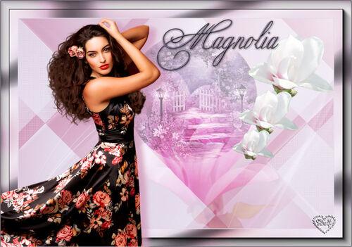 variation Magnolia