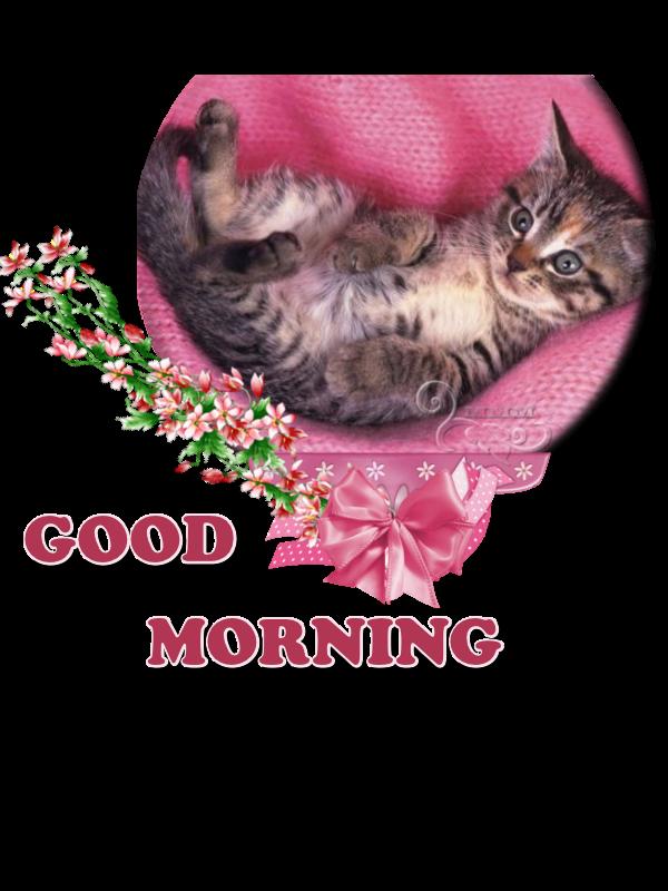Good Morning - 04