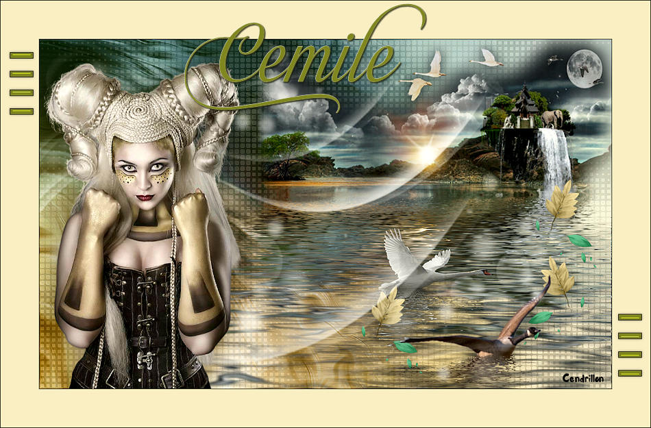 Cemille - PSP Arena - Traduction Animabelle