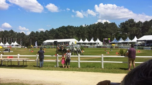 CONCOURS D'ATTELAGE INTERNATIONAL