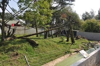 Zoo olmen 2014.2 203