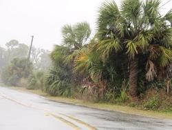 Sur les routes de Floride - 1