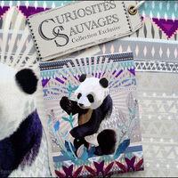 Decodelire Porte-monnaie Panda