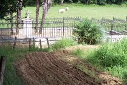 Le cimetière des Anglais - Bayonne