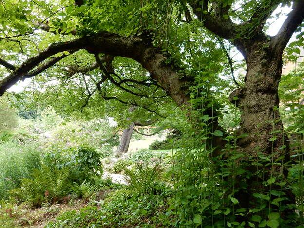 Jardin et labyrinthe du musée Van Buuren