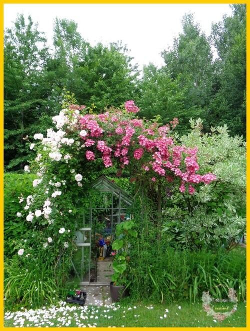 coté jardin