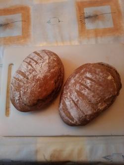 A la recherche des petits pains dorés