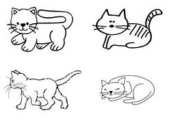 Tri et classement de chats