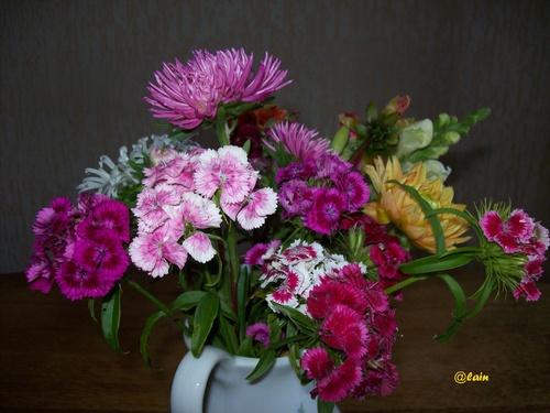 Fleurs .