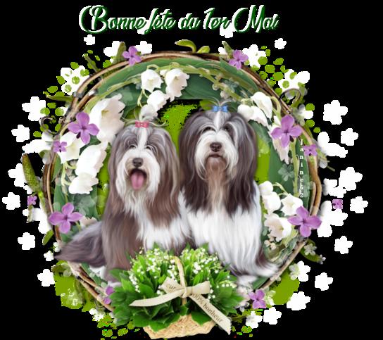 Bonne semaine à venir ♥ d' Athos & Cheyenne ♥