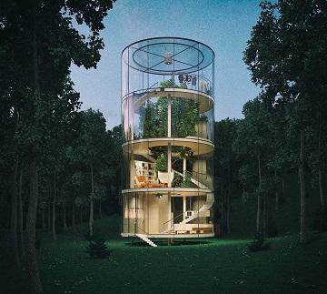Construire une maison autour d'un arbre ...