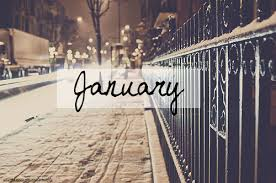 Mes lectures du mois #6 : Janvier 2016