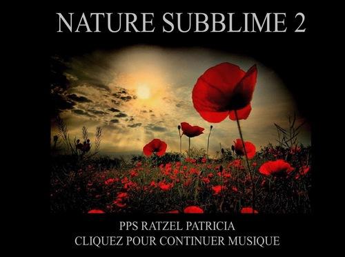 NATURE SUBLIME MUSIQUE 2.pps.ppsx »