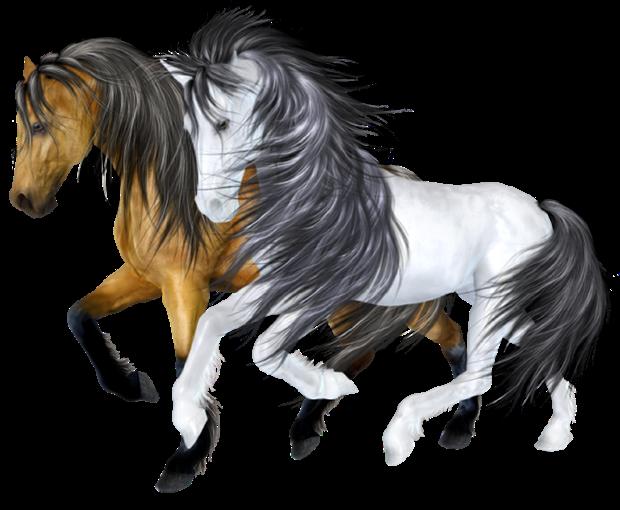 Tubes Animalerie (2016) - Thème Les chevaux série 03