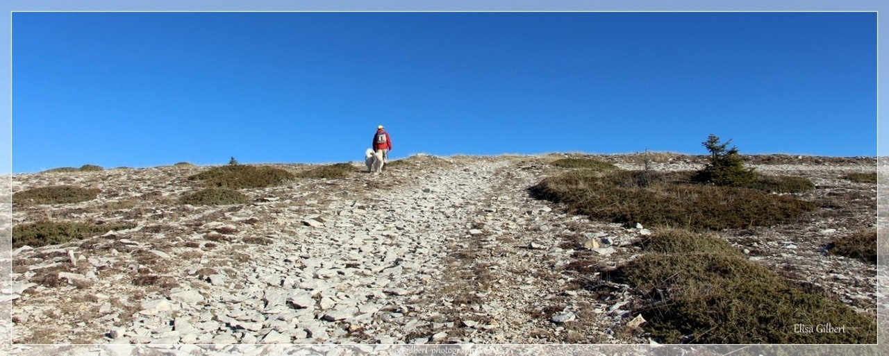 La montagne de Lure #1