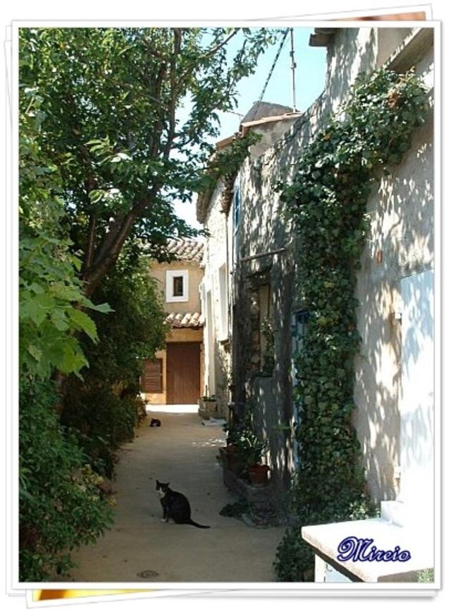 Mon village provençal...