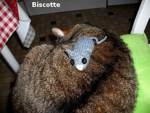 Tu souris ma Biscotte !