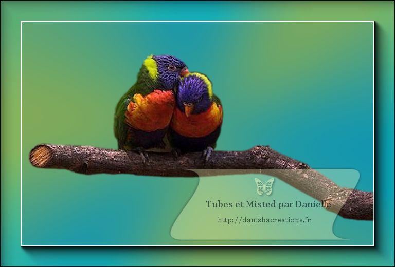 oiseau8