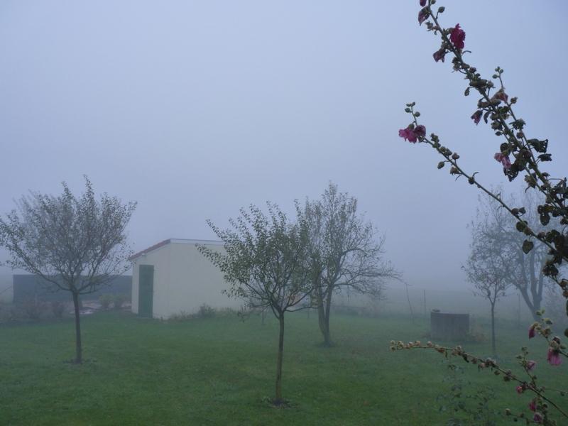 brouillard soleil couchant arc en ciel....