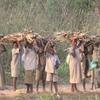 Togo Chaque enfant repart de l'école avec un fagot de bois
