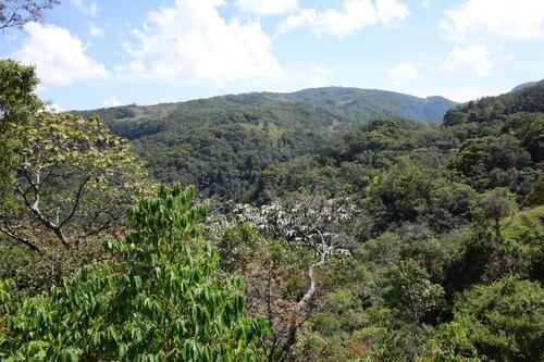 De Tunja à quelques kms de Barbosa