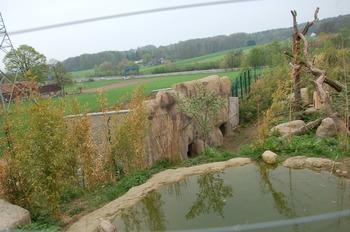 Zoo Osnabruck d50 2012 088