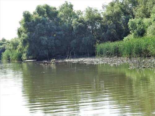 Le beau Delta du Danube en Roumanie (photos)