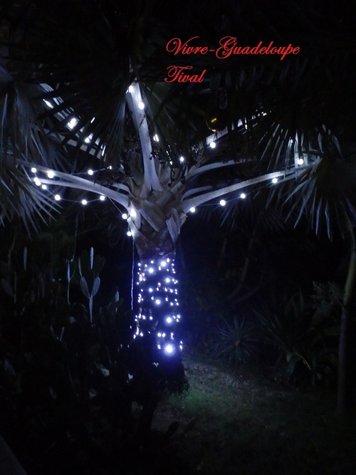 Noel à Tival