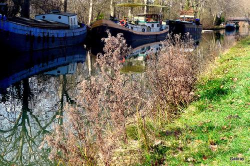 Canal du Midi: herbes péniches et reflets ...
