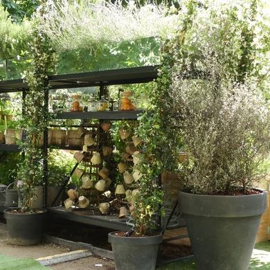 Jardins Jardin aux Tuileries...