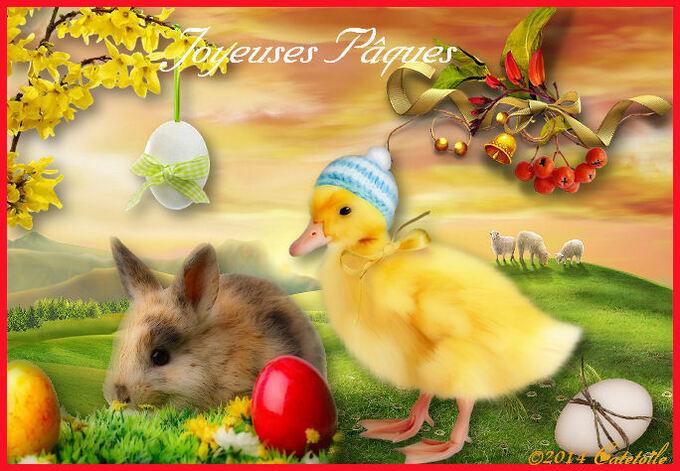 Bonnes Fêtes de Pâques à Toutes et Tous