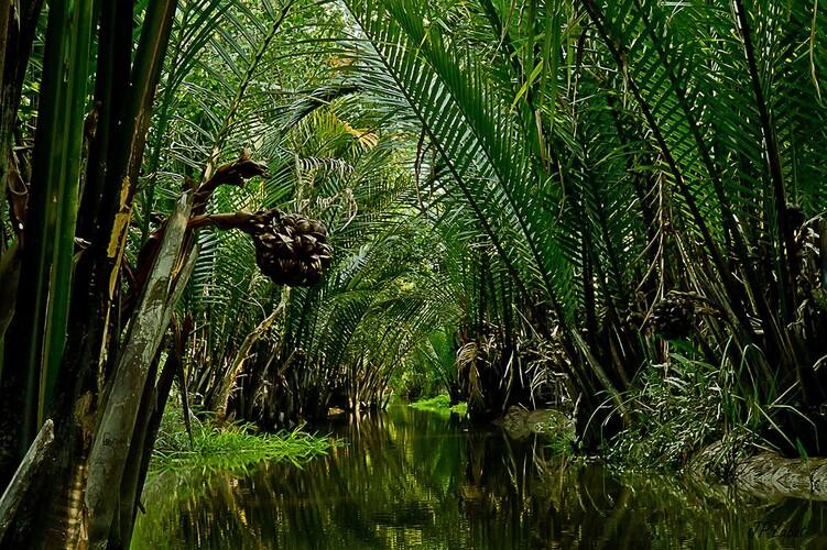 Les réveillons bioculturels de Jasmin Tonkin Travel