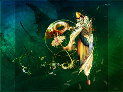 Le Magicien-Oiseau