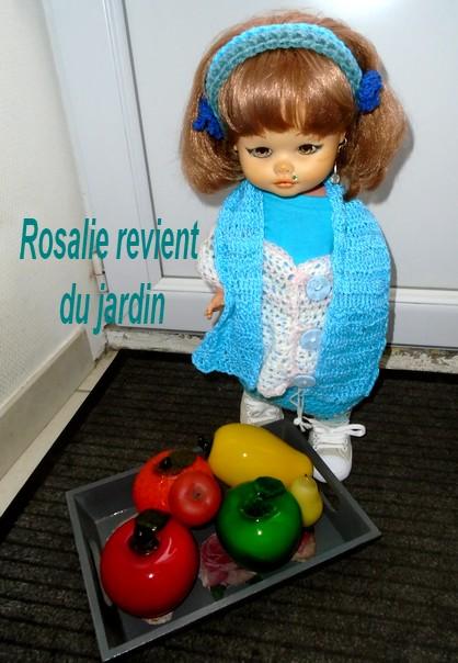 Les légumes du jardin de Rosalie