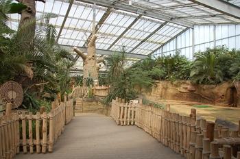 zoo cologne d50 2012 218