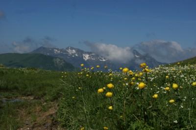 Blog de beaulieu : Beaulieu ,son histoire au travers des siècles, Randonnée..Les Grandes berges.Col du Bresson.Vues sur la Pierra Manta.18.06.2015