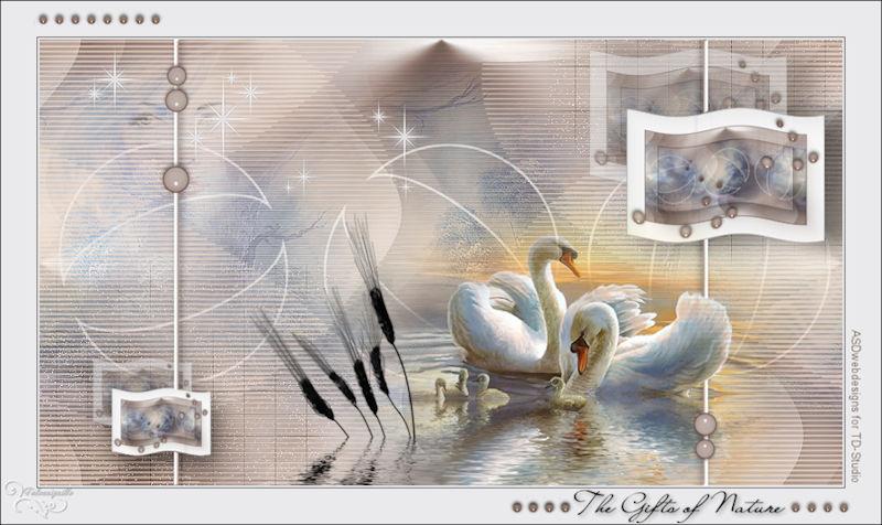 *** Les 114 Nature - ASDwebdesigns for TD-Studio ***
