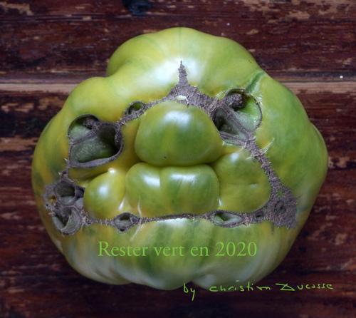 RESTER VERT, OUVERT, EN 2020