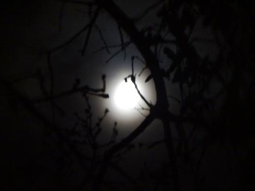 Nouvelle Lune du 21 Avril 2012, de nouveau un puissant triangle de Terre!