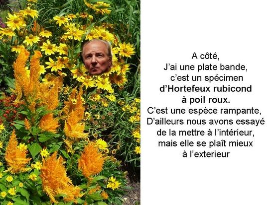 politique_et_jardinage_003