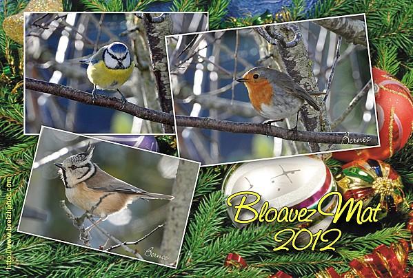 voeux breton 2012 WEB