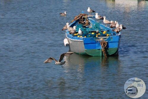 D'Oualidia à Ceuta