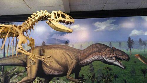 29 mai, le parc des dinosaures