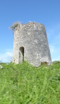Antilles (2)