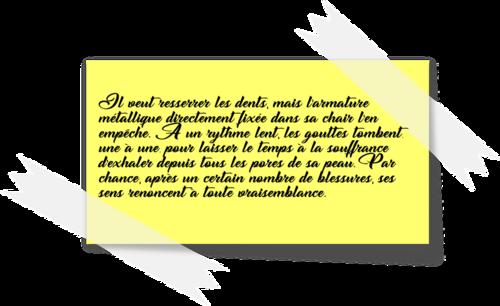 Le trésor maudit des templiers - Sylvain Silvestro